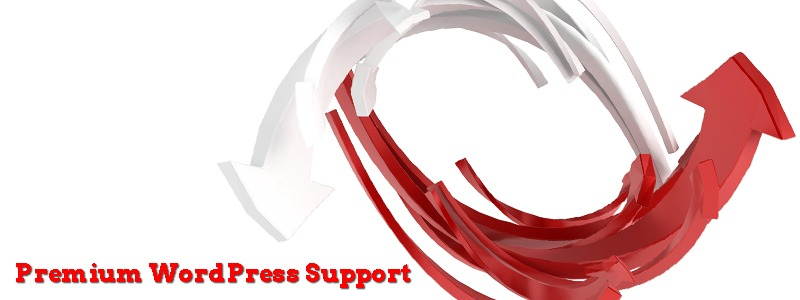 Why Prefer Premium WordPress Support
