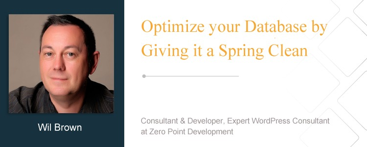 Wil Brown, Consultant & Developer, Expert WordPress Consultant at Zero Point Development